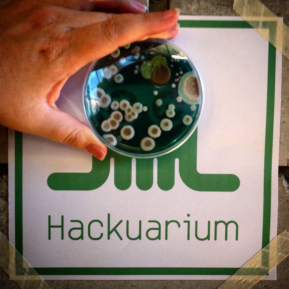 logo_Hackuarium